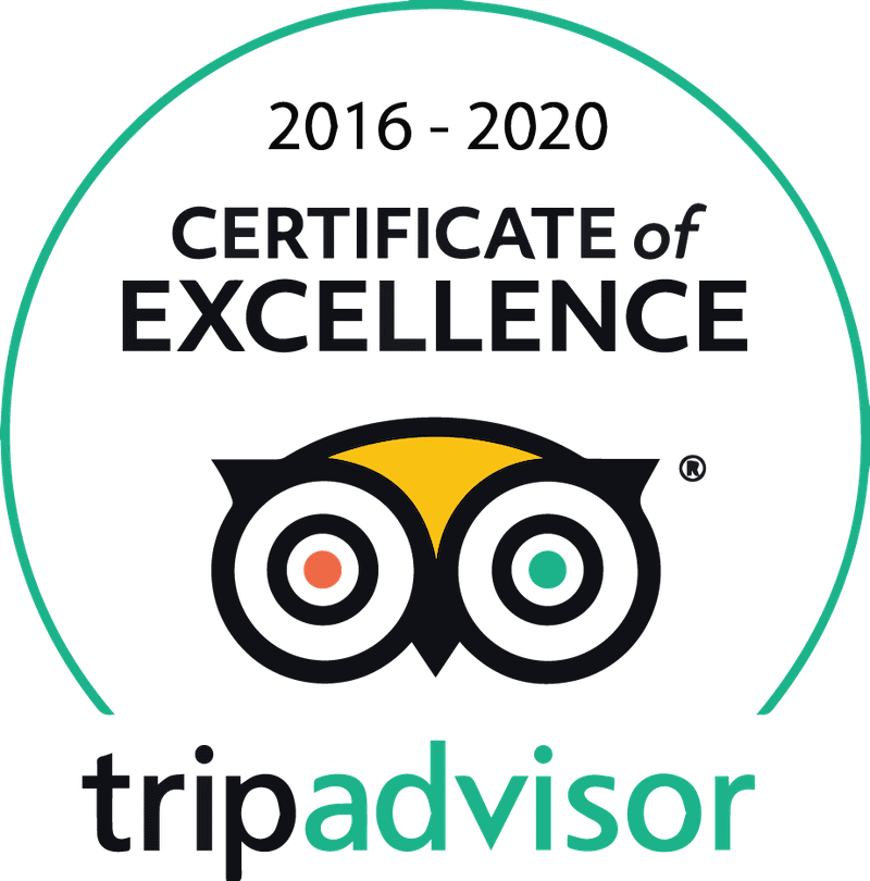 Trip Advisor Certificate of Excellence Logo 2016-2020